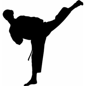 mon valley ymca karate tournament rh monvalleyymca org martial arts clipart this computer martial arts clip art free download